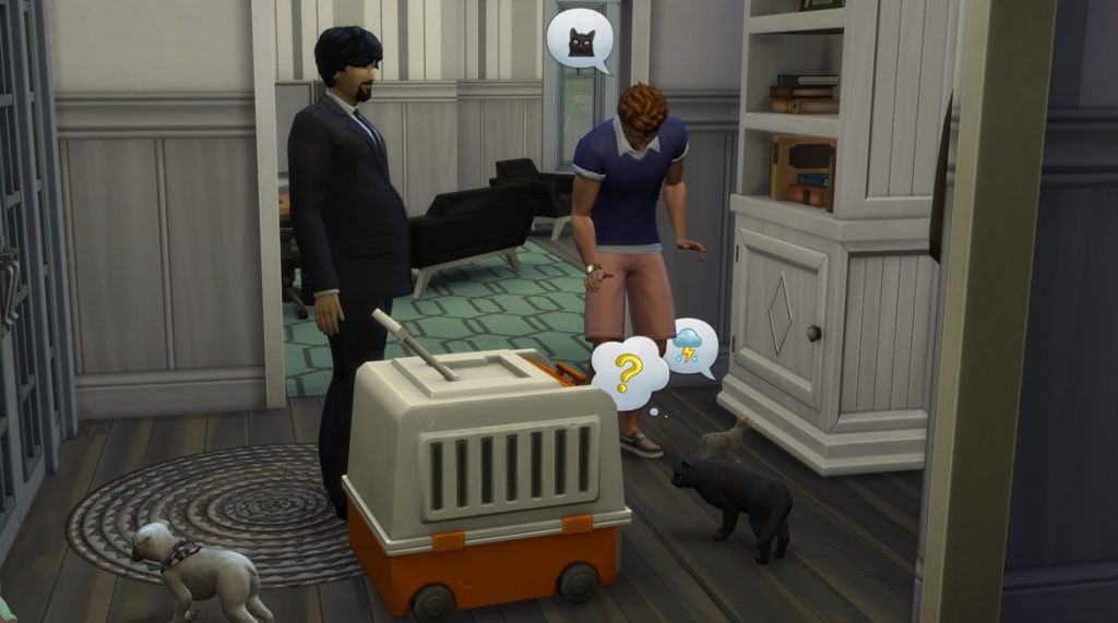 Adoptowanie kota w The Sims 4