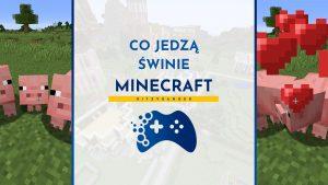 Co jedzą świnie w Minecraft?