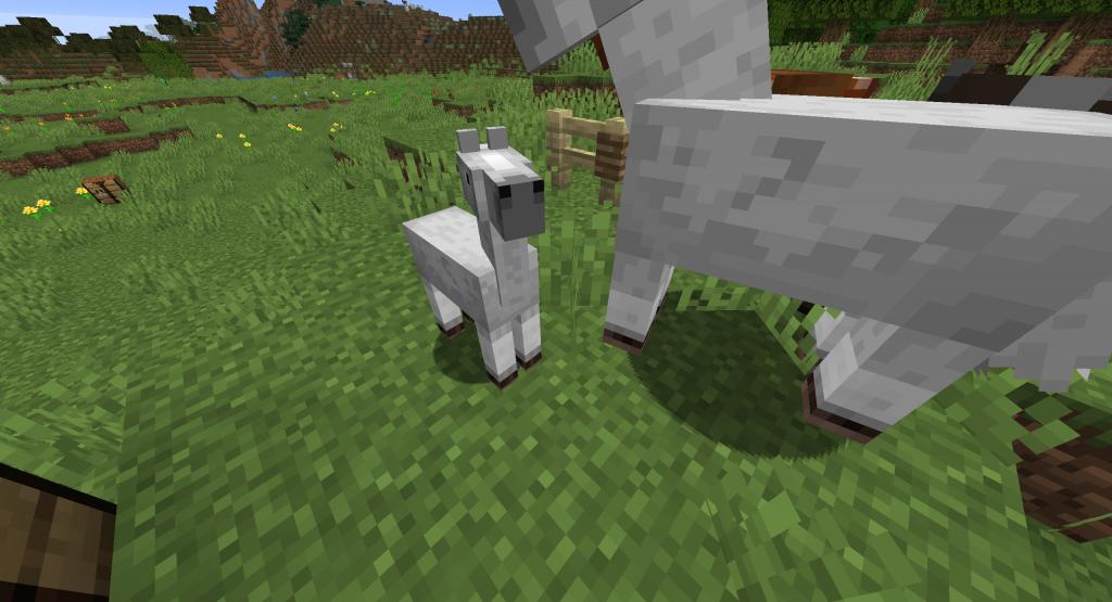 Jak rozmnożyć konie w Minecraft - małe źrebie