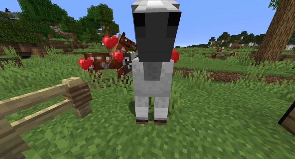 Jak rozmnożyć konie w Minecraft?