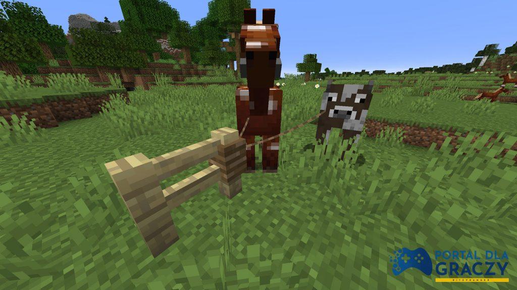 Przypinanie smyczy do płotu Minecraft