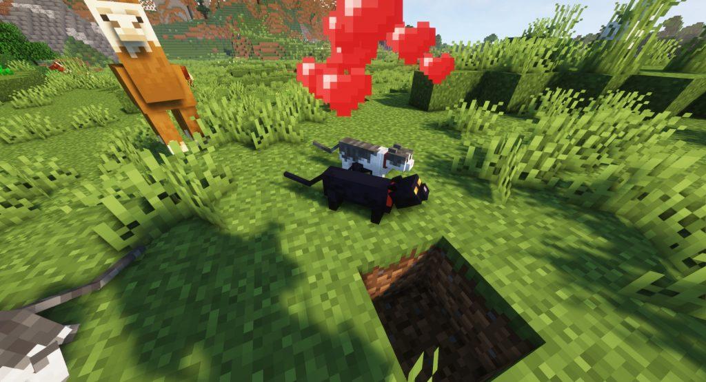 Jak rozmnożyć kota w Minecraft