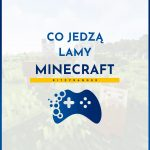 Lamy Minecraft - co jedzą?