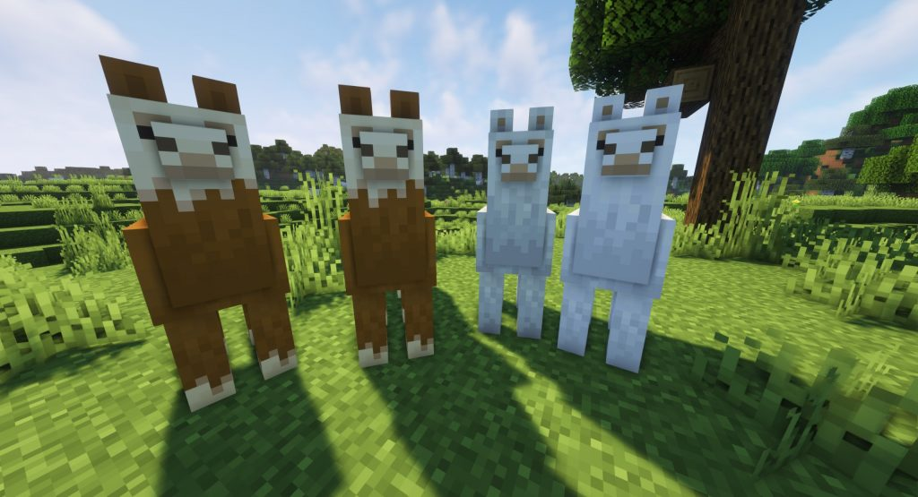 Hodowla lam Minecraft