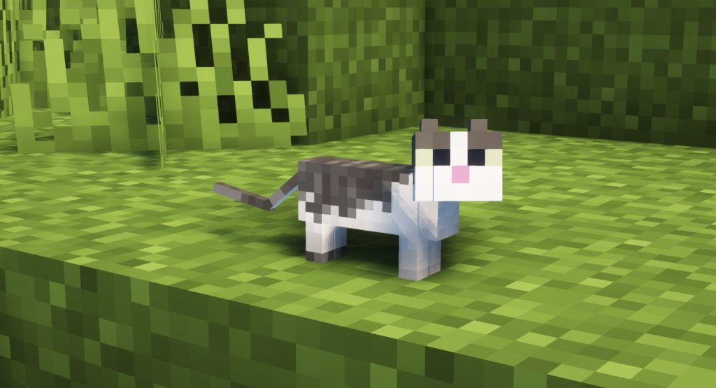 Mały kotek Minecraft