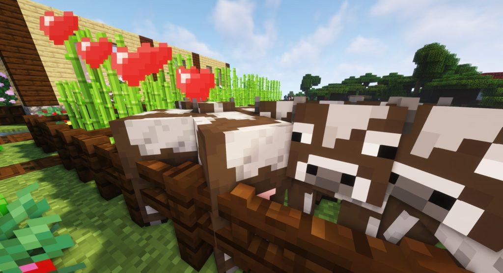 Rozmnażanie krów Minecraft