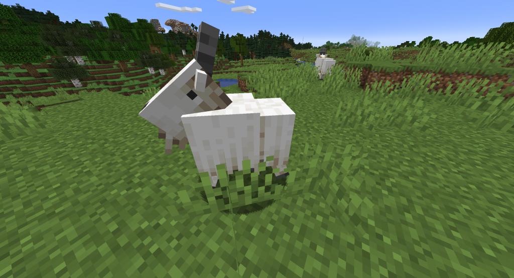 Minecraft - koza, przydatne informacje