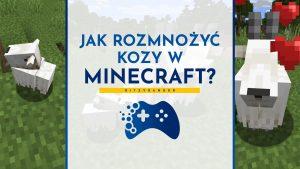 Jak rozmnożyć kozy w Minecraft?