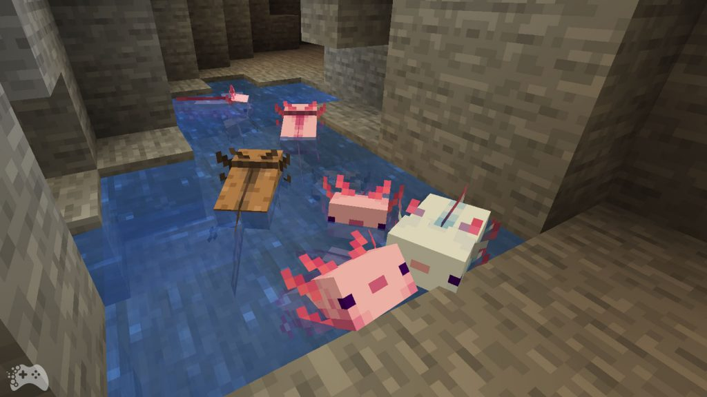 Aksolotle Minecraft 1.17